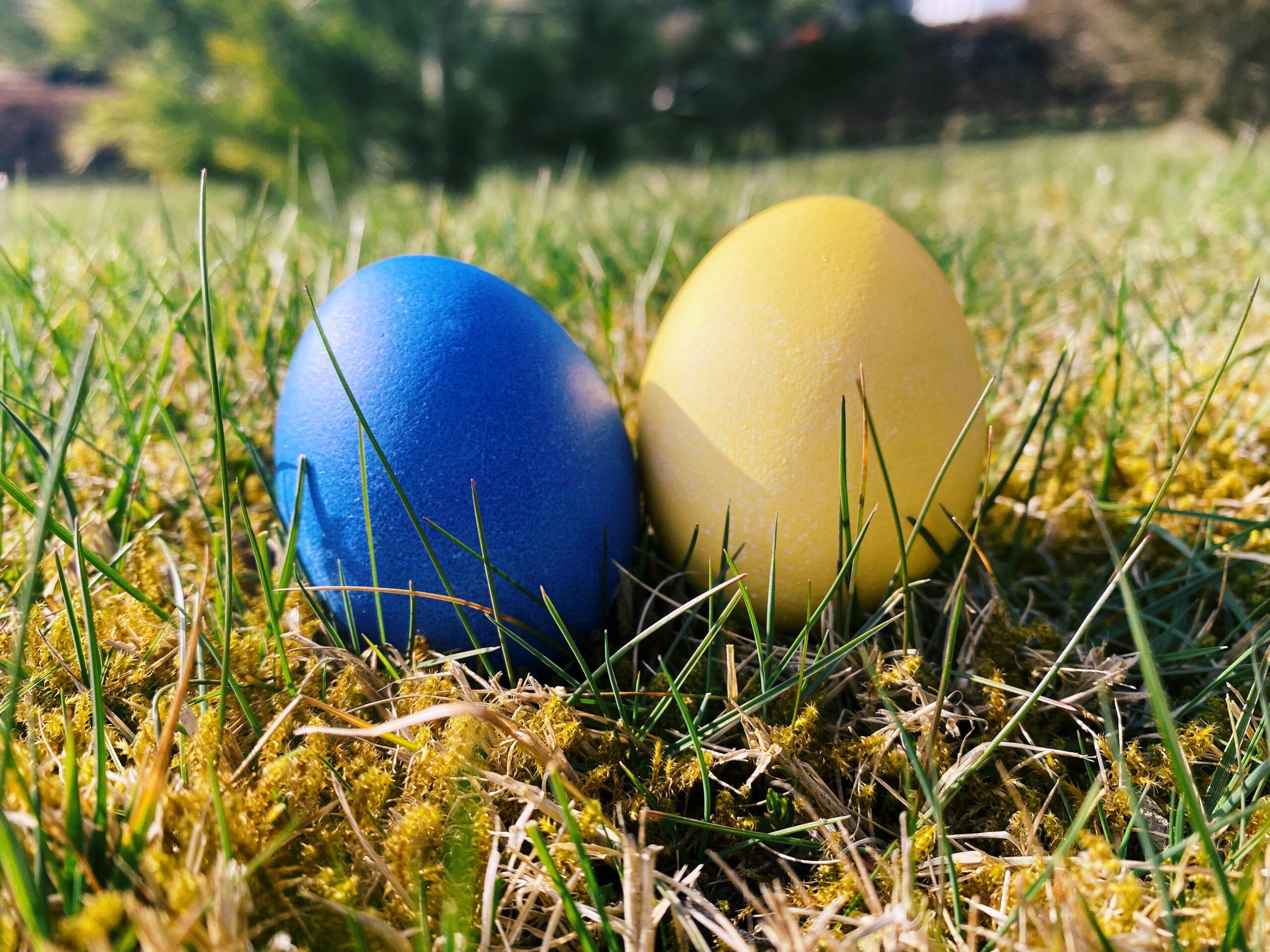 Wir wünschen allen Sportfreunden ein schönes Osterfest im Kreise der Familie!